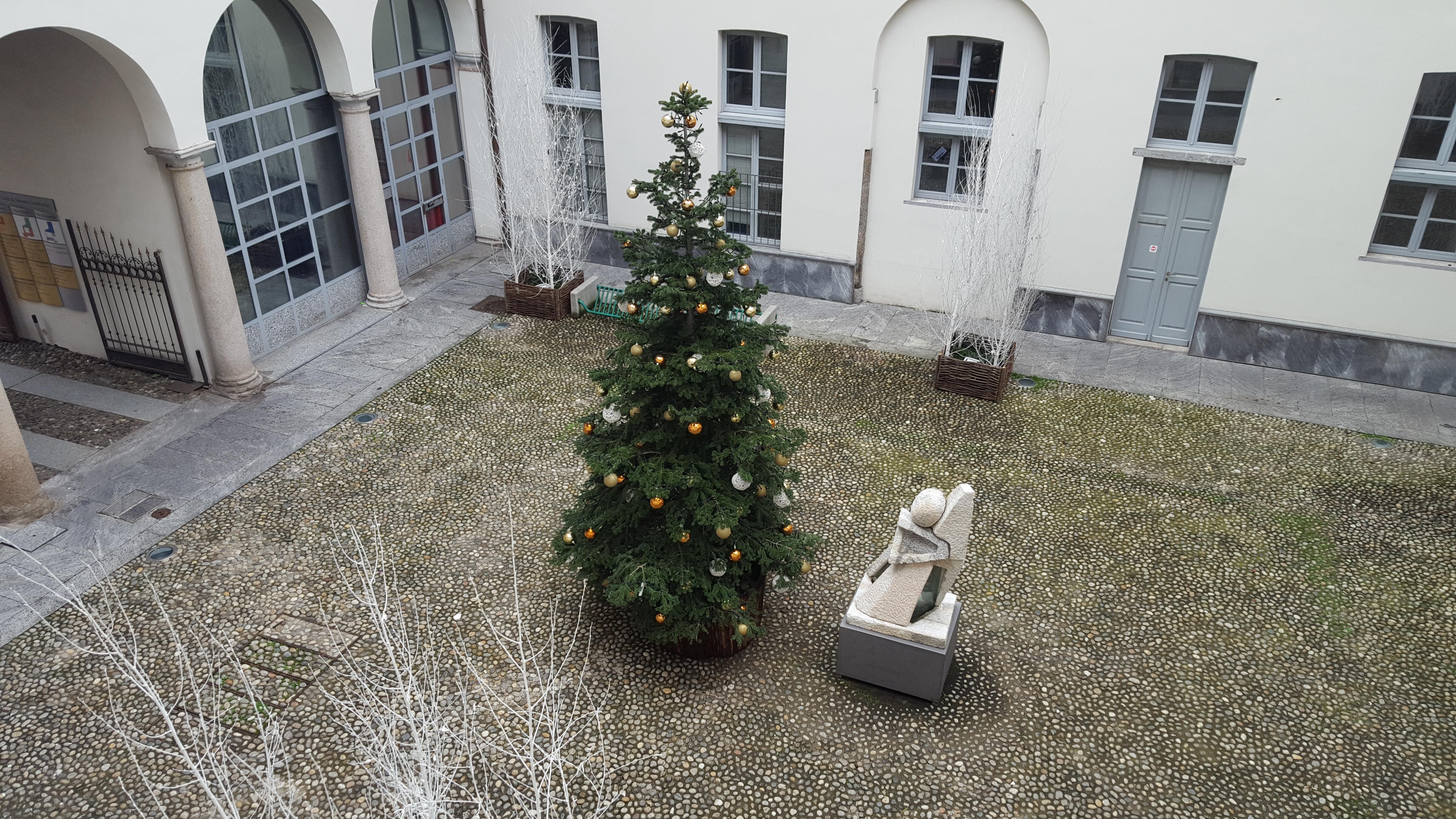Concorso Natale in vetrina 2019: modalità di partecipazione