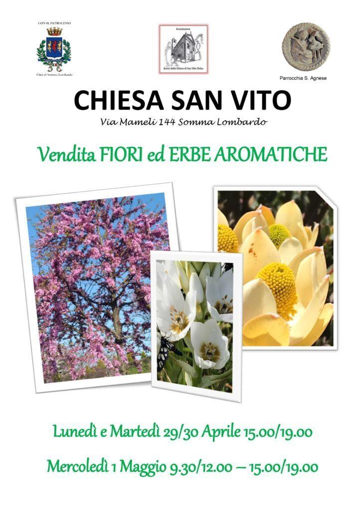 Vendita fiori ed erbe aromatiche